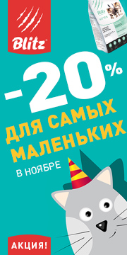 Скидка 20% на корма для котят и щенков Blitz