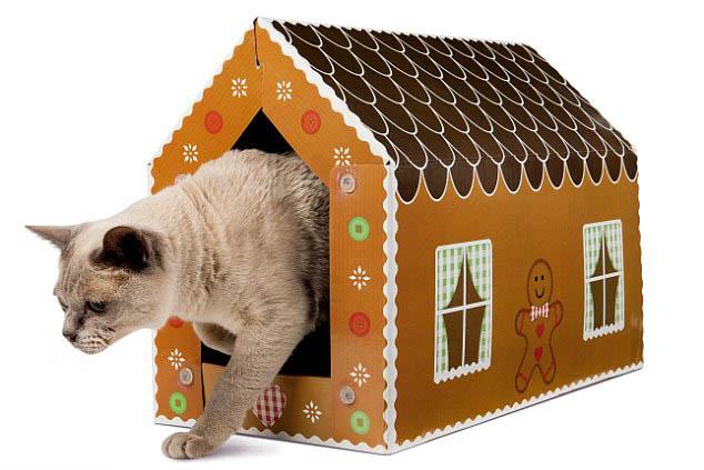 Что подарить кошке