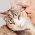 Фото любимых кошек: баловни судьбы
