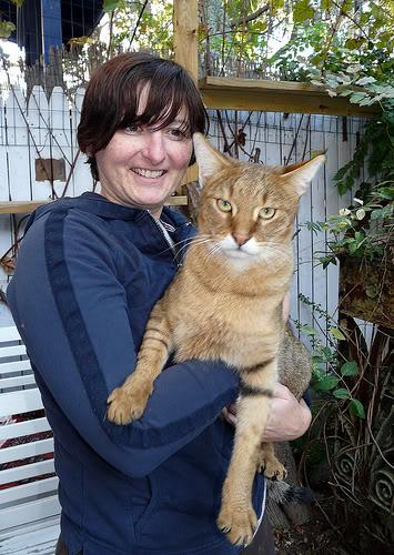 Фото самых крупных пород кошек