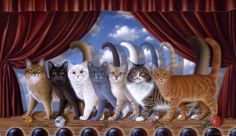 Как определить характер кошки по окрасу?