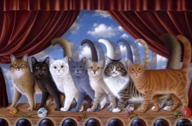 Определить характер котенка по окрасу