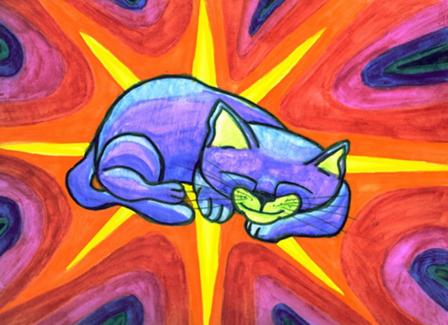 Интроверты и кошки