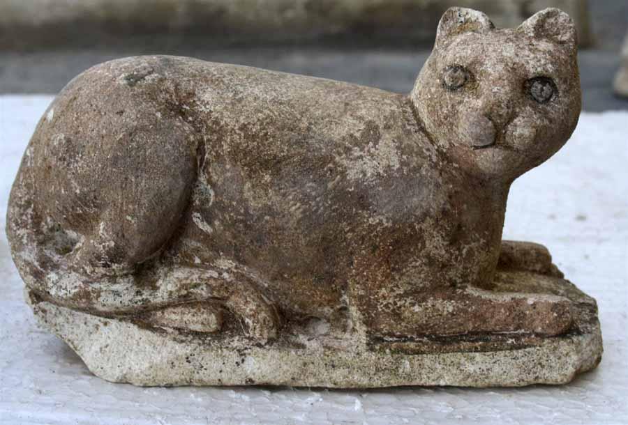 История британских кошек