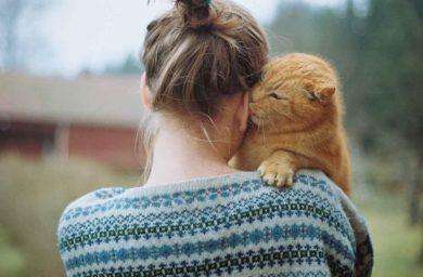 Как кошки проявляют любовь к человеку