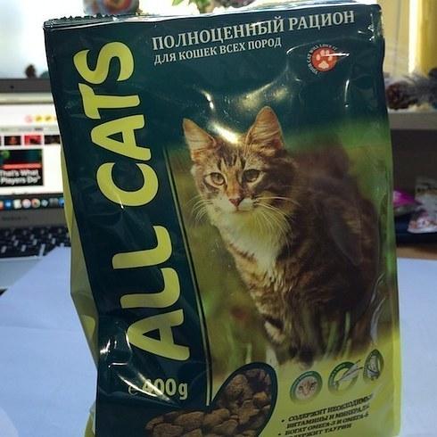 Как на вкус кошачий корм All Cats