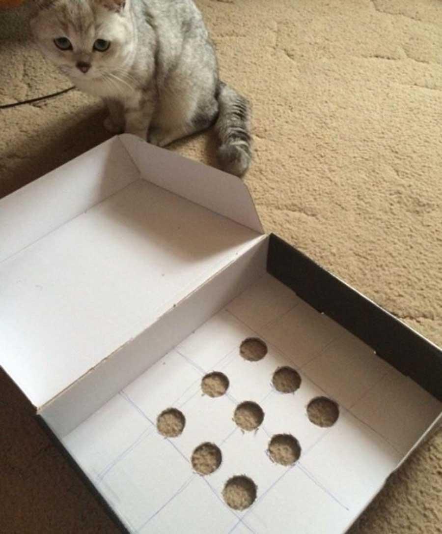 Как коту сделать игрушку