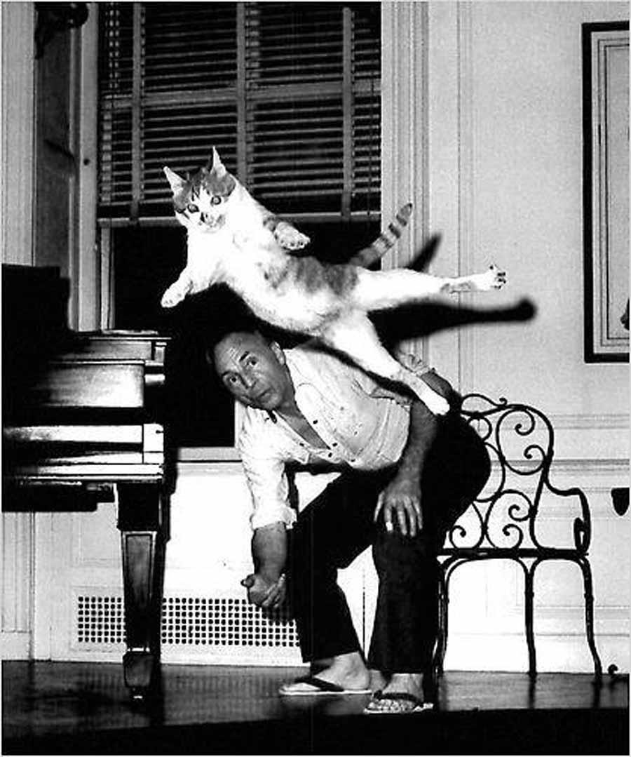 Кошка Баланчина