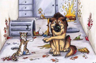Кошка или собака устроила погром