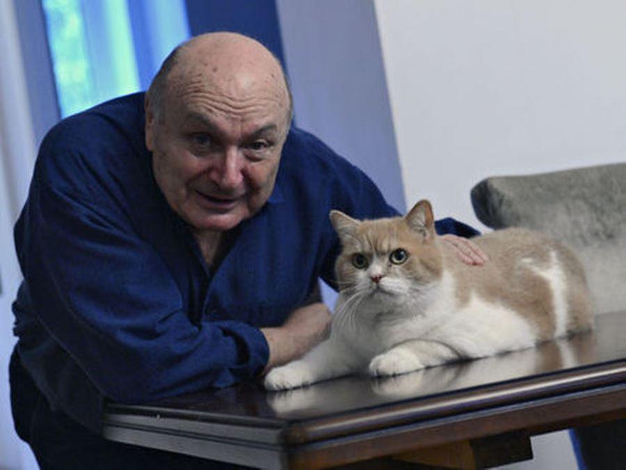 Кошки известных людей