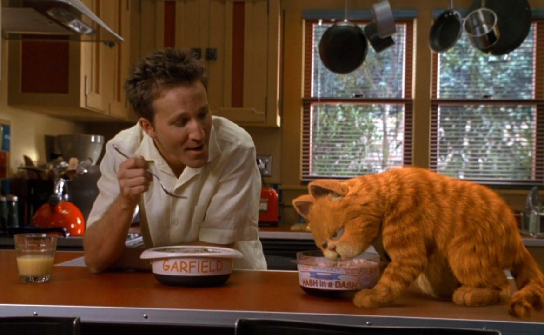 Корм из ботинка или любимая еда кота Гарфилда – выбираем с питомцем