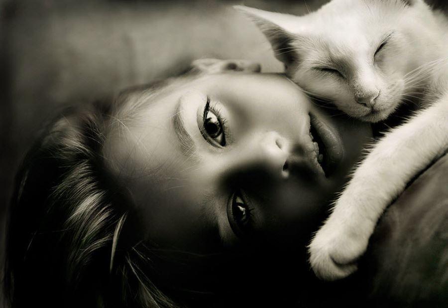 Почему кот ложится на человека