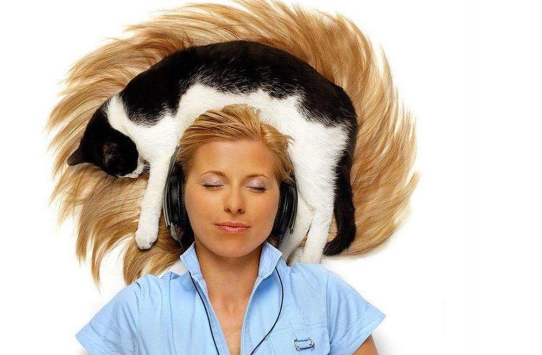 с кошкой на голове
