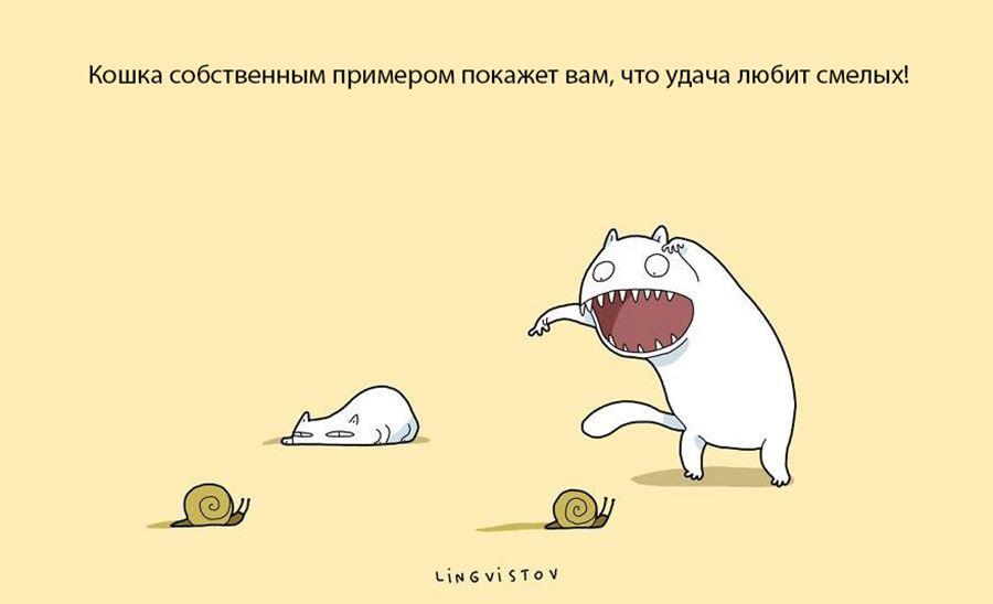 Преимущество жизни с кошкой