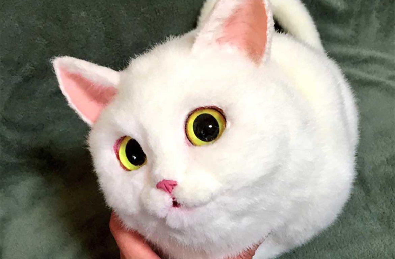 Сумочка в виде кошки: креатив по-японски