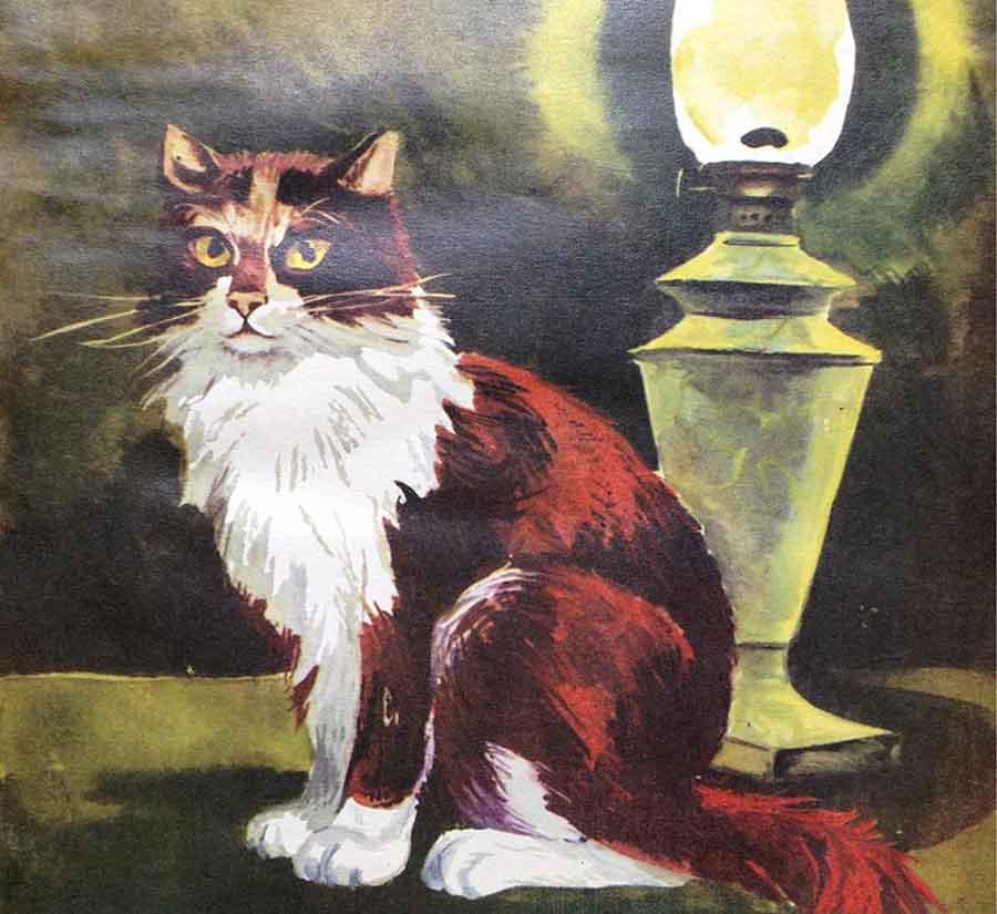 Кошки в литературе - первая красавица