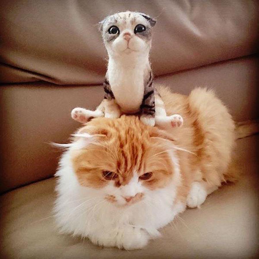 Валяние из шерсти – кошка