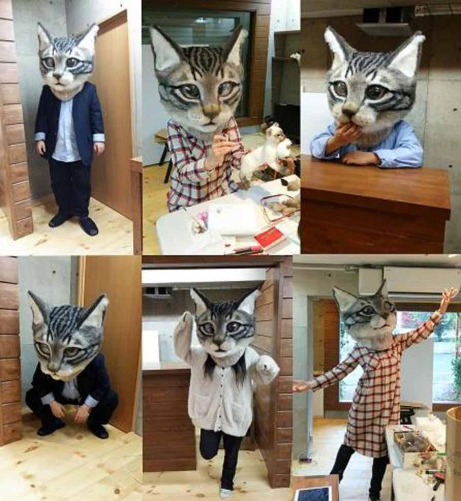 Валяние из шерсти – кошки