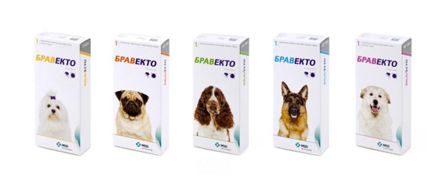 На ветеринарном конгрессе 2017 представлен препарат bravecto