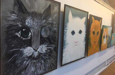 Выставка-фестиваль «Портрет кошки» в Санкт Петербурге