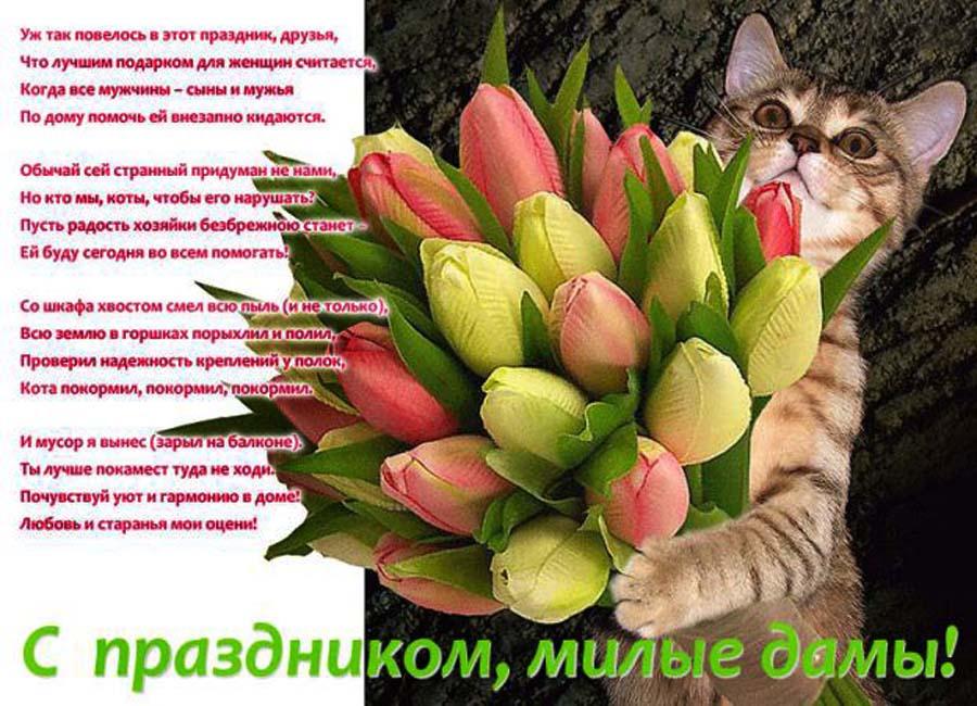 Открытка вязальщице, открытка кошка 8 марта