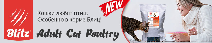 Blitz Adult Cat Poultry