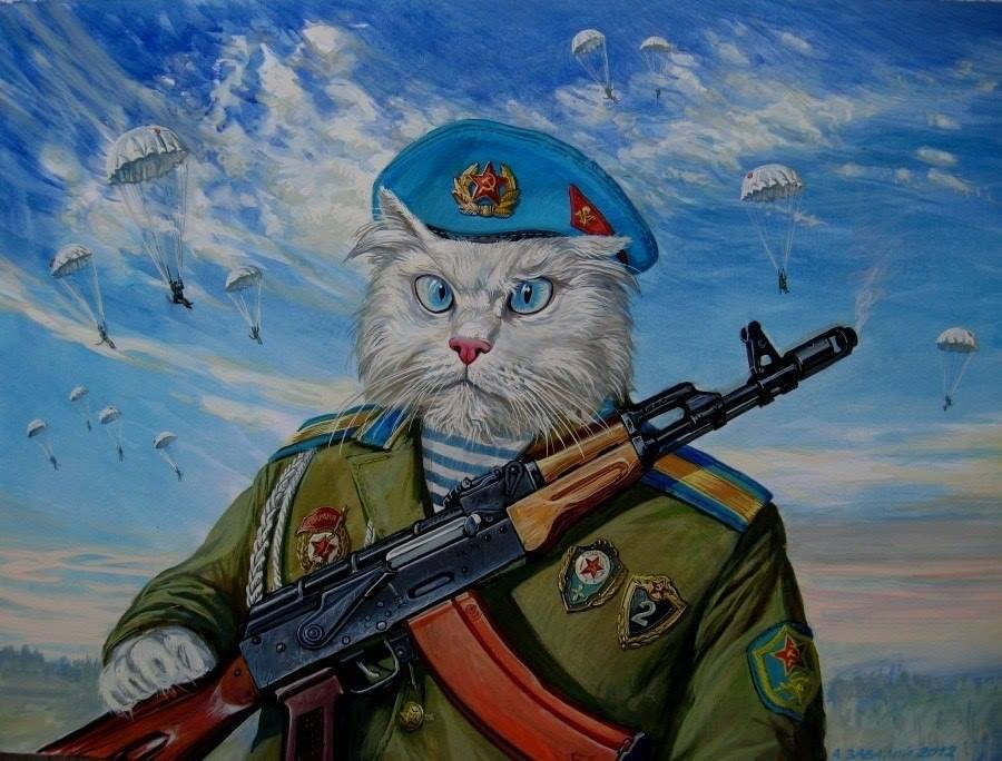 подходит картинки военные животные обучения стал работать