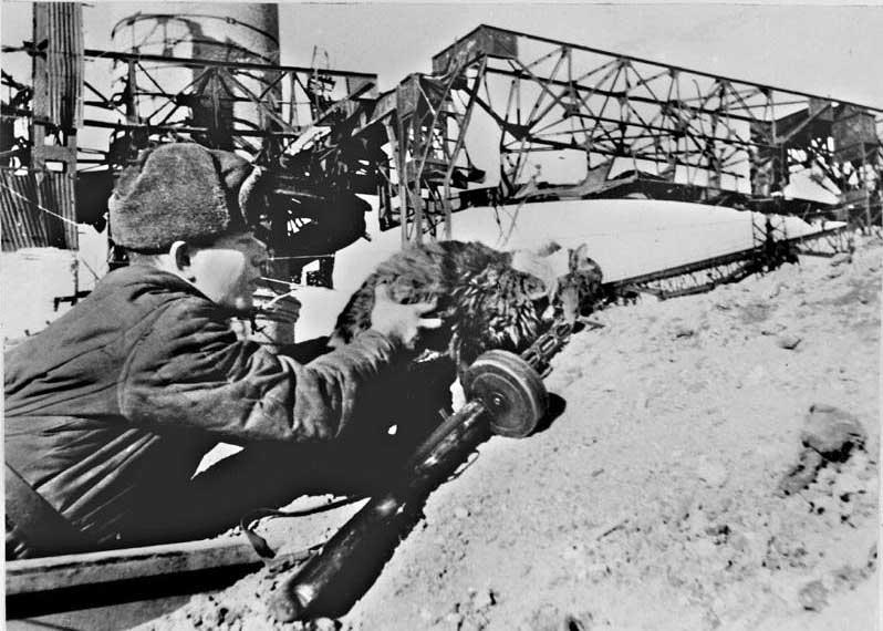 Боец засылает кота с листовкой солдатам и офицерам окруженной немецкой группировки под Сталинградом. Январь 1943 г.