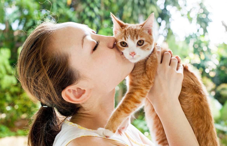 глисты у кота может ли заразиться человеку
