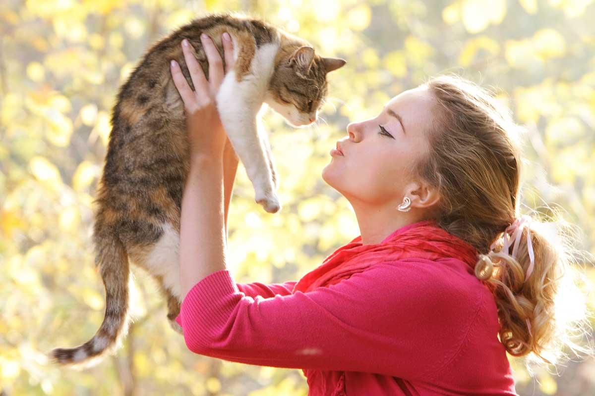 Помнят ли кошки прежних хозяев